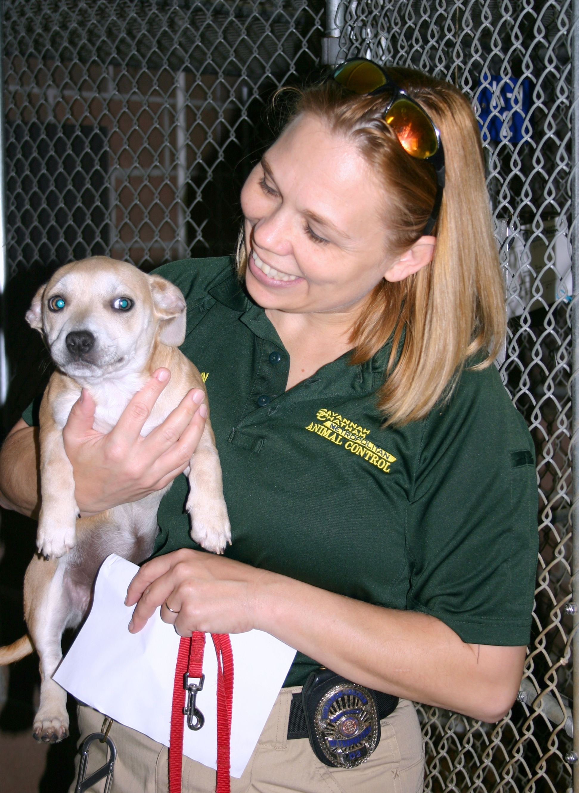 Animal Control Officer Christina Sutherin carries a pup to the Atlanta Humane Society transport vehicle.